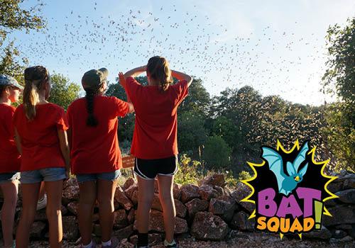 bat-squad